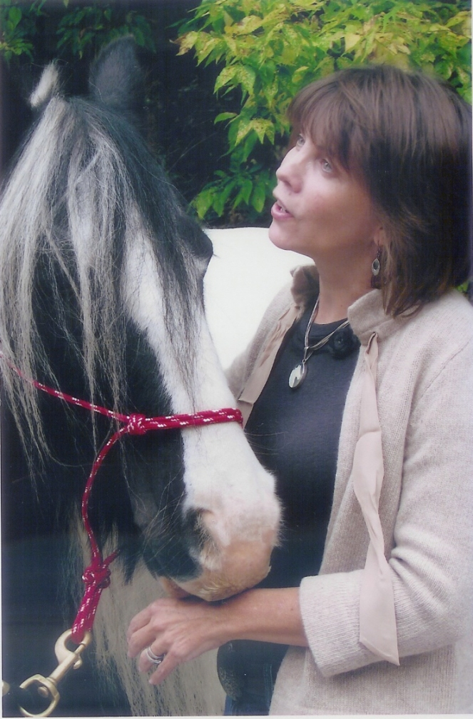 A super, good horse - Misto
