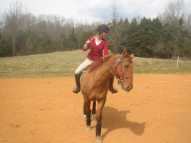 Working critters at Lost Creek Farm hunt, trail ride, teach polo, and EAP