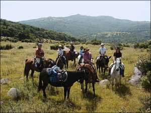 Back Country Horsemen clear trails and practice Leave No Trace