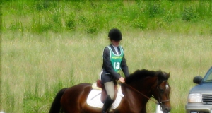 Riddle's and Judith's dressage test