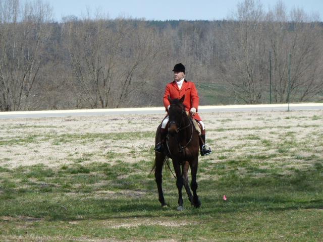 blog.horse