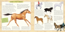 Interior breeds